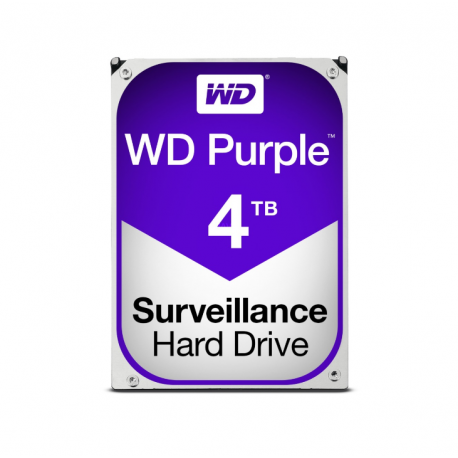Video surveillance 1 TB hard drive