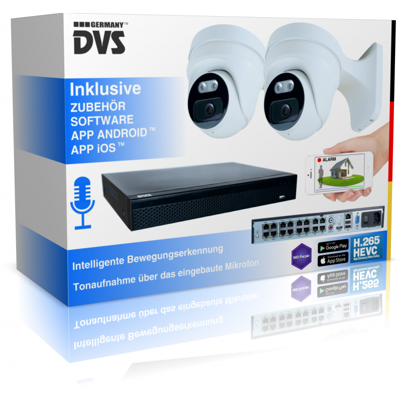 Video surveillance 4K with intelligent human recognition & sound recording including alarm function
